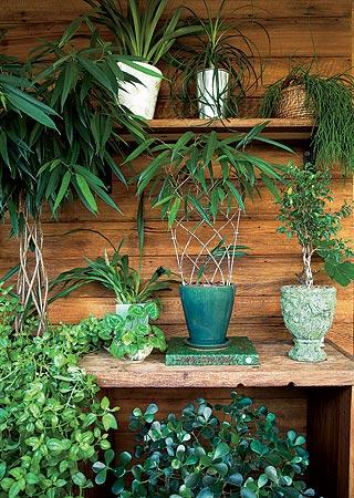 casa e jardim varanda
