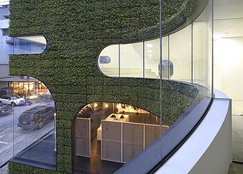 fachada viva2